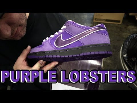 RELEASE THE LOBSTERS! | Concepts x Nike SB Purple Lobster Dunk