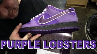 RELEASE THE LOBSTERS! | Concepts x Nike SB Purple Lobster Dunk Video