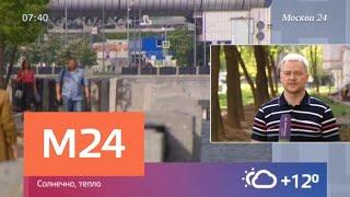 Смотреть видео МЧС предупредило о сильном тумане и ухудшении видимости в Москве - Москва 24 онлайн