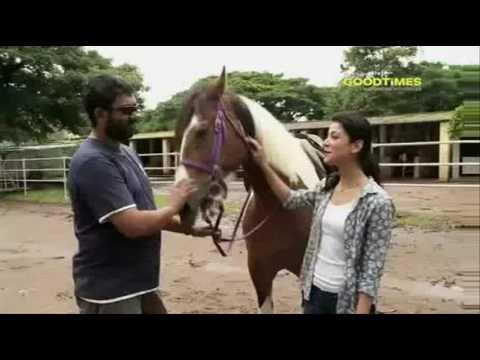 16398 sport tiere NDTV From Mumbai to Kerala to Jaipur   YouTube 11 10