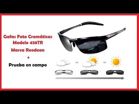 Gafas De Sol Fotocromaticas Marca Reedoon