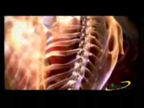 Простатит и лечение простатита, аденома простаты
