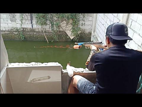 Fish Hunting Part 1 (Air Gun)