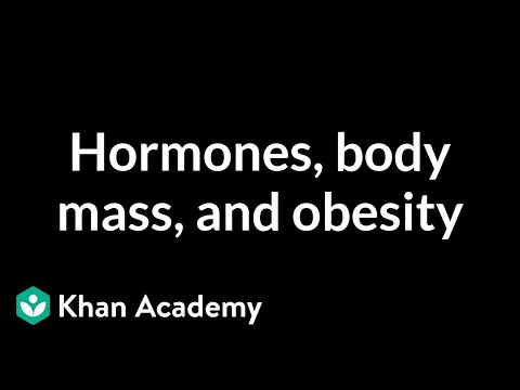 Hormones, body mass, and obesity