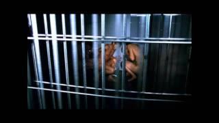 Pixies - Cactus + Das Experiment film