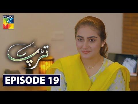 Download Tarap Episode 19 HUM TV Drama 5 July 2020