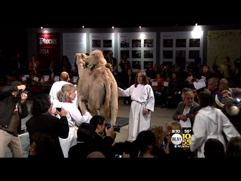 Annual Blessing of the Animals Held At Cathedral of Saint John the Divine