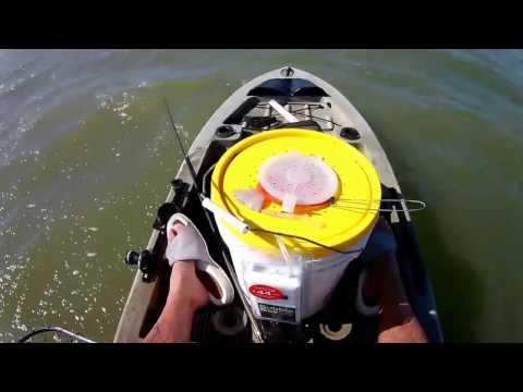 Galveston 8 Mile Red Fish!!!