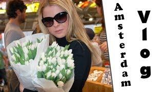 Vlog: AMSTERDAM, Bulldog coffeeshops, цветочный рынок