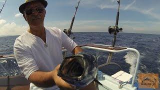 ТАЙЛАНД, морская рыбалка/Удачная рыбалка троллингом ПХУКЕТ/Неожиданный улов  Андаманское море.