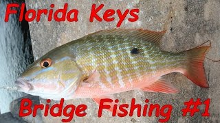 Key West Bridge Fishing - Episode #1 - Let
