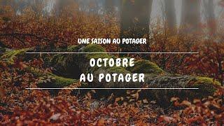 🌿 [Potager 2019 ép. 56] Octobre au potager