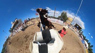 360° Video  Wild Horse Race 2020 Prescott, AZ YouTube Videos