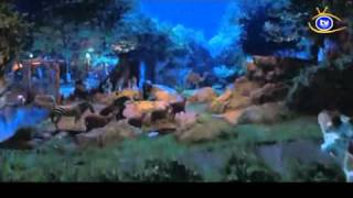 El guardián del zoológico (Zookeeper) trailer subtitulado TVcanal.NET - 35mm