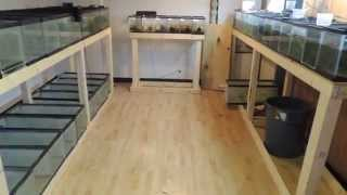 New Fishroom Build:  Part One Introduction