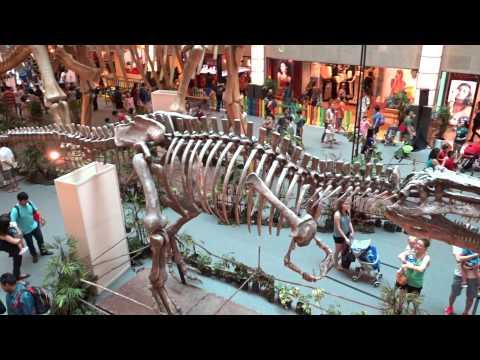 Argentinosaurus 阿根廷恐龍化石仿制品展覽 (Replica fossil setup of Argentinosaurus)