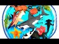 Learn Wild Zoo Animals names For Kids Safari Education Sea Animal Learn Colors