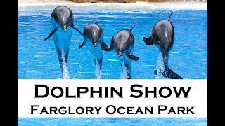 Dolphin show at Farglory Ocean Park, Hualien, Taiwan