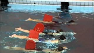 Обучение Детей Плаванию Брассом