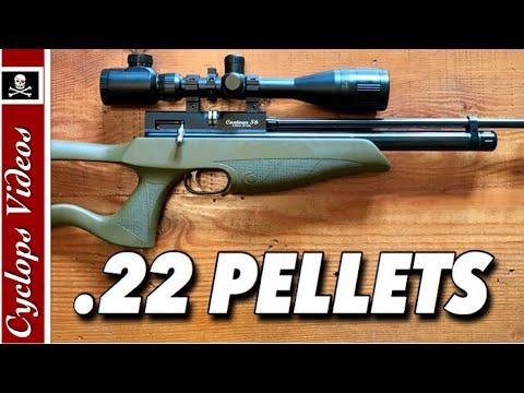 Best Hunting Pellets .22