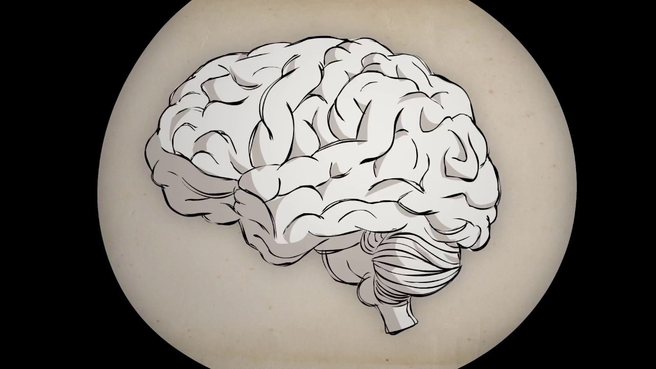How addiction hijacks the brain.