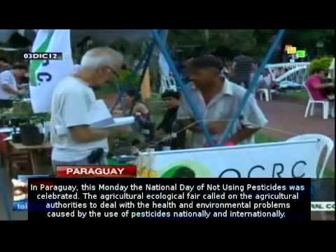 Paraguay celebrates international no pesticides day