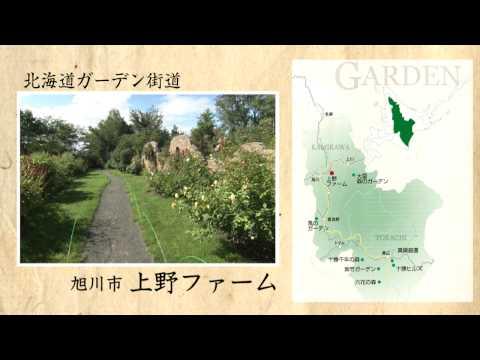 様々なテーマで北海道をゆったり楽しむ「極上のおとな旅」を紹介する動画コンテンツに第3話が登場!