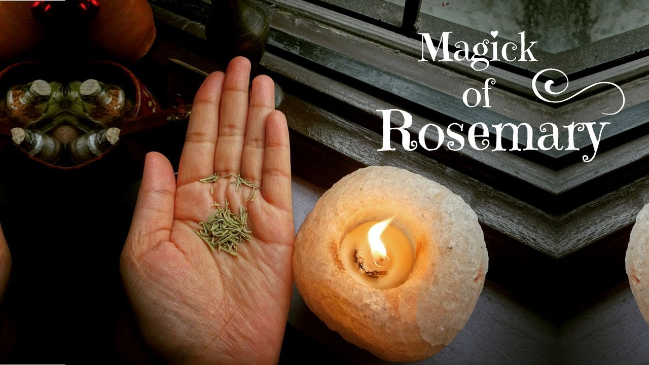 Magickal Uses Of ROSEMARY | Quick Look