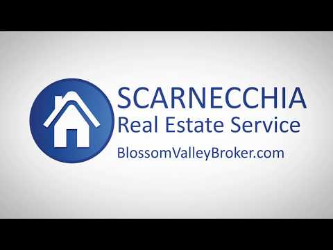 Scarnecchia Real Estate Service v1 0