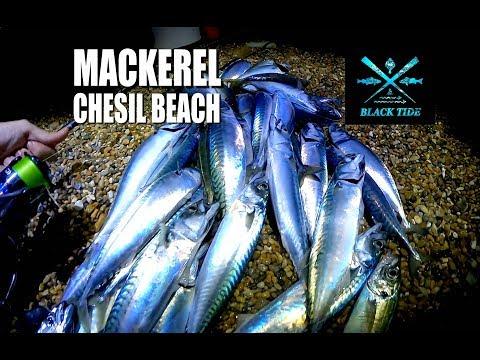 Black Tide Fishing: Mackerel - Chesil Beach