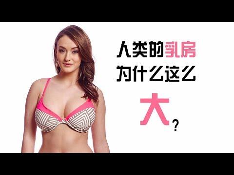 人类的乳房为什么这么大?关于乳房的4个超级冷知识 thumbnail
