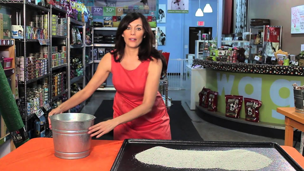 how to make a litter box for a large dog tips for dog lovers youtube. Black Bedroom Furniture Sets. Home Design Ideas