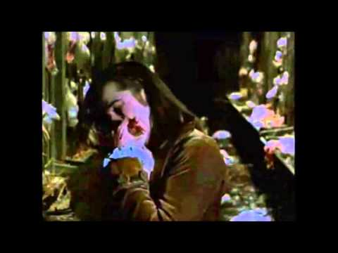 London After Midnight - Spider and The Fly (Subtitulada)