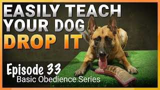 Easily Teach Your Dog The Drop It Command.