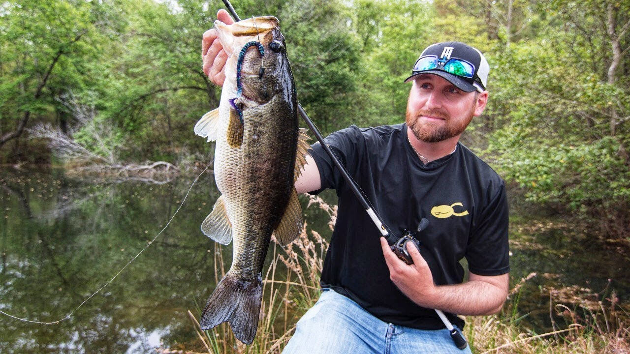 Bank fishing ponds for bass youtube for Bass fishing in ponds