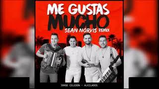 Jorge Celedon Alkilados Me gustas mucho Sean Norvis Remix.mp3