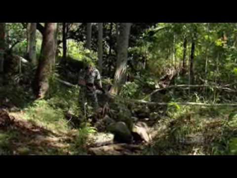 Download Sea Patrol Season 3 Episode 7 - Half Life (part 4)
