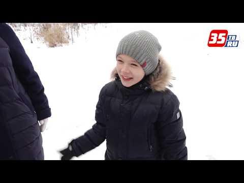 Земля или деньги: В Вологодской области заработал новый закон о поддержке многодетных семей