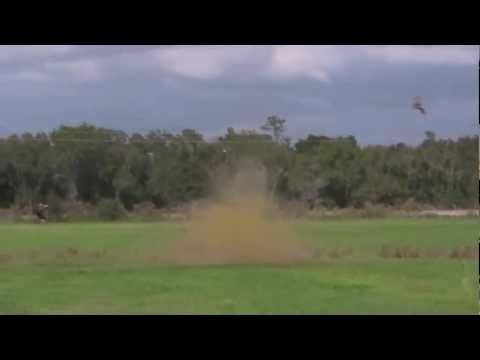 blowing-up-hogs-with-tannerite!-this-is-the-real-deal!