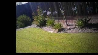 Homes for sale Fresno California Listing Selling Buying Short Sale Foreclosure
