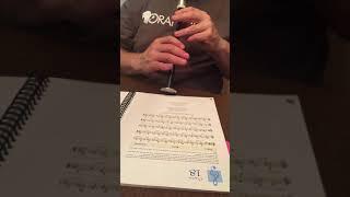 Teribus-practice chanter slow play