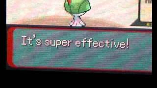 pokemon emerald random videos - July 23, 2005