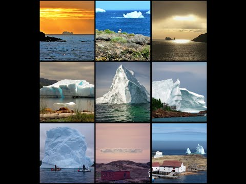 IceBerg Alley 2015 - Top Pictures