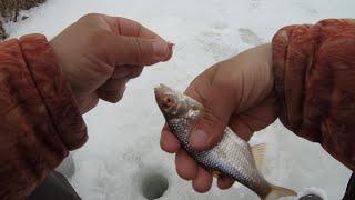 Зимняя рыбалка весной Ловля плотвы и голавля в марте 2021 на реке