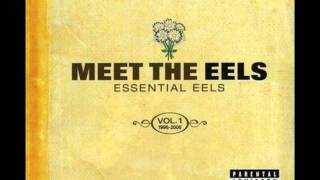 The eels - Love of the loveless (HQ)