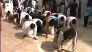 Pakistani Asli Desi musalman 2.flv
