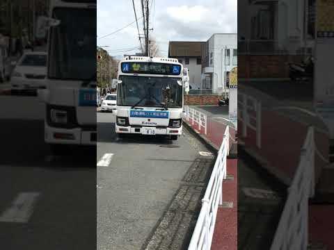 忘れ物 臨港 バス 忘れ物パイプライン: IYN