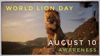 World Lion Day August 10, 2020