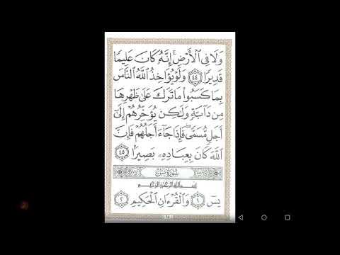 رسائل تعبير ٠٠٣٦ قراءة سورة يس في المنام روابط تفسير الأحلام حسين جمعة