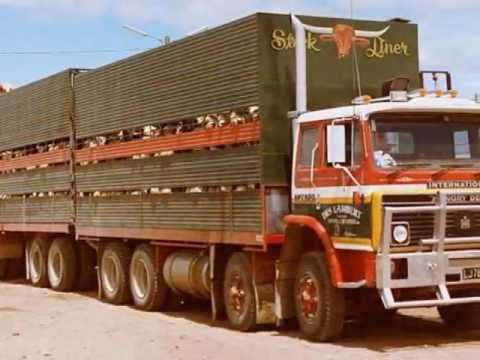 Old Livestock Trucks New Zealand - YouTube